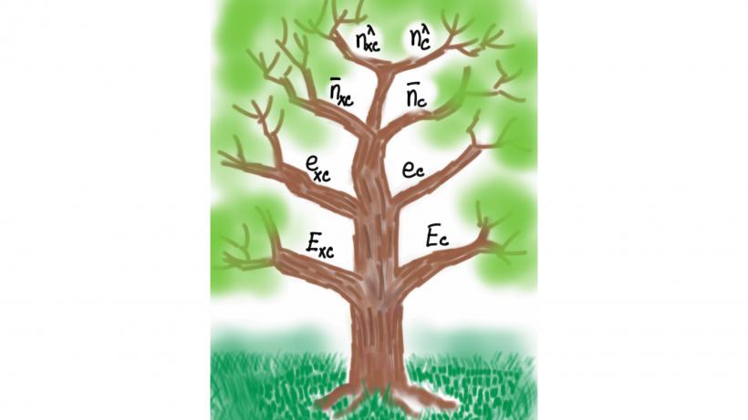 Exchange correlation tree